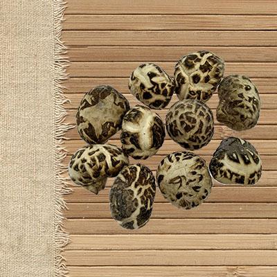 dehydrated mushrooms