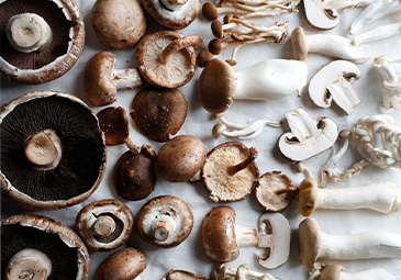 Mushrooms take a center level in many meatless recipes